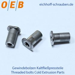 Threaded bolts Cold Extrusion Parts - OEB-Fasteners - Otto Eichhoff GmbH & Co. KG