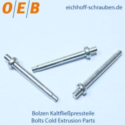 Bolts Cold Extrusion Parts - OEB-Fasteners - Otto Eichhoff GmbH & Co. KG